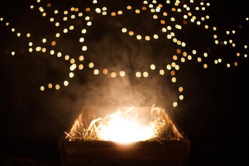Light in the Manger